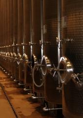 Ekskurzija-Drustva-vinogradnikov-2021-23
