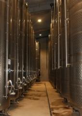 Ekskurzija-Drustva-vinogradnikov-2021-24