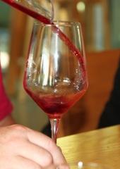 Ekskurzija-Drustva-vinogradnikov-2021-48