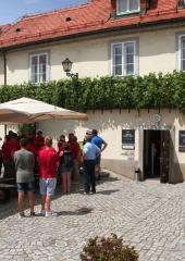 Ekskurzija-Drustva-vinogradnikov-2021-92