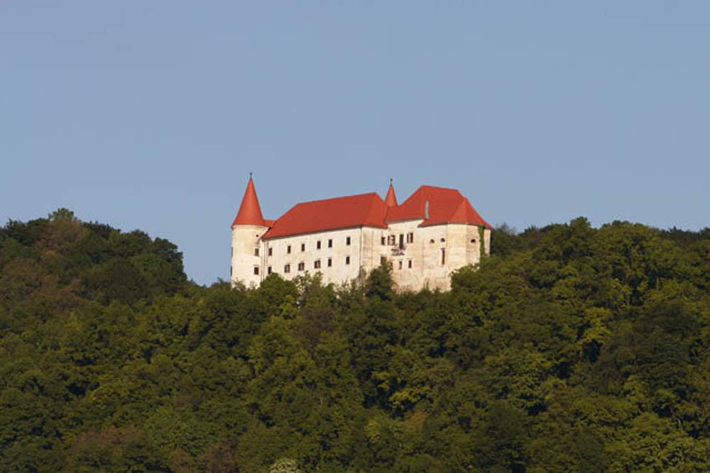 Grad Bizeljsko (4)