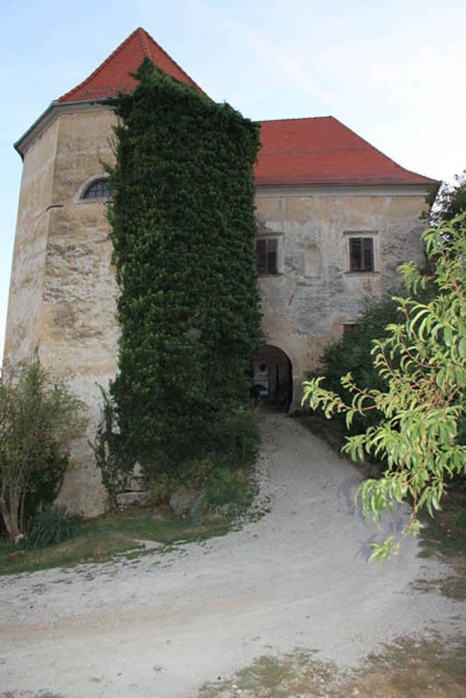 Grad Bizeljsko (68)