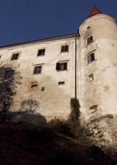 Grad Bizeljsko (5)