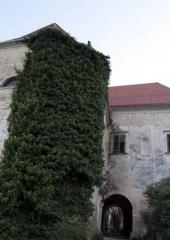 Grad Bizeljsko (6)