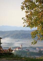 Jesen-med-vinogradi-Bizeljsko-2020-1