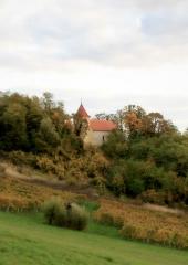 Jesen-med-vinogradi-Bizeljsko-2020-11