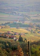 Jesen-med-vinogradi-Bizeljsko-2020-67