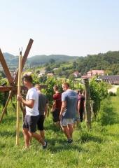 Lovrenčevo-Bizeljsko-2020-16