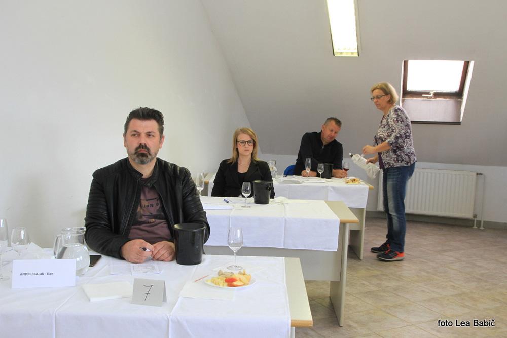 Ocenjevanje-vin-Bizeljsko-2021-4