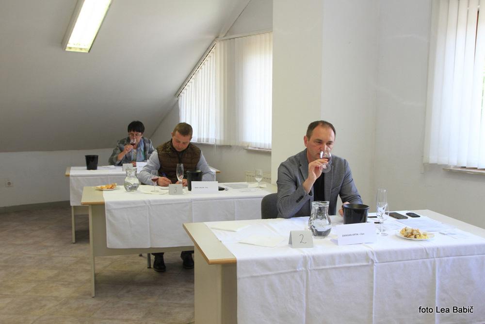 Ocenjevanje-vin-Bizeljsko-2021-5