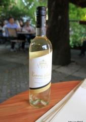 Podelitev-priznanj-vinogradnikom-Bizeljsko-2020-16
