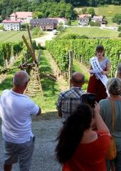 Tradicija-postavljanja-klopotca-Bizeljsko-2021-18
