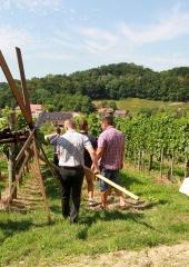 Tradicija-postavljanja-klopotca-Bizeljsko-2021-19