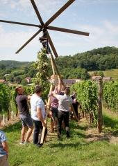 Tradicija-postavljanja-klopotca-Bizeljsko-2021-21