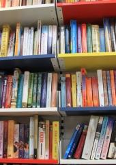 Potujoca-knjiznica-tudi-na-Bizeljskem-2020-9