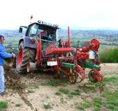 April strojno sajenje vinske trte (1)