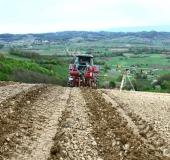 April strojno sajenje vinske trte (11)
