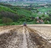 April strojno sajenje vinske trte (12)