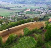 April strojno sajenje vinske trte (13)